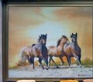 Ranch | Film Stampato One Way | StickySkyGlass