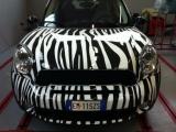 Effetto zebrato | Mini CountryMan | StickyPrint